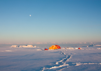 Field site on the Disko Island ice cap of west Greenland