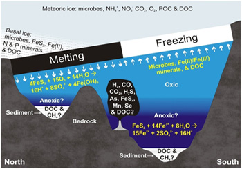 Hypothetical scenario for a chemosynthetic ecosystem in Subglacial Lake Vostok